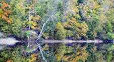 Beautiful Autumn Nature Landscape Near River Stock Image