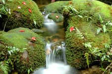 Free Waterfall Stock Photo - 16398670