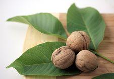 Free Walnuts Royalty Free Stock Image - 16399306