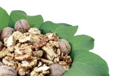 Free Walnuts Royalty Free Stock Photography - 16399317