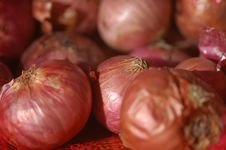 Free Onions Royalty Free Stock Photography - 1640487