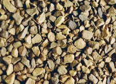 Free Coffee Granules Stock Photo - 1640560
