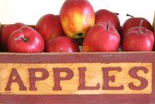 Free Basket Of Apples Royalty Free Stock Image - 1641726