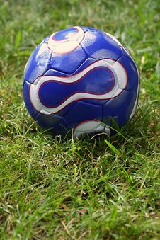 Free Soccer Ball In Grass Royalty Free Stock Image - 1641926