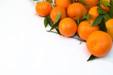 Free A Pile Of Tangerine Branches Stock Photography - 1643322