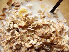Free Difference Cereal In The Dish Royalty Free Stock Photography - 1644637