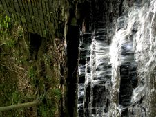 Free Forest Waterfall Stock Photography - 1647132