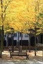 Free A Samll Sqaure Near The University Of Antwerp Stock Photos - 16405373