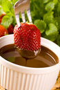 Free Strawberry In Chocolate Stock Photography - 16409552