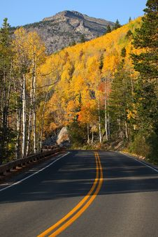Free Fall Color On A Mountain Road Royalty Free Stock Photo - 16400945