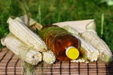 Bottle Of Oil And Corn Stock Image
