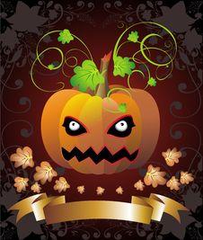 Free Halloween Pumpkin Stock Photography - 16401402