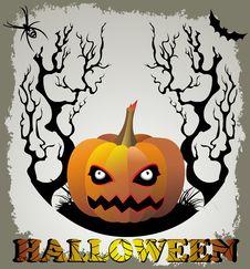 Free Halloween Stock Image - 16402641