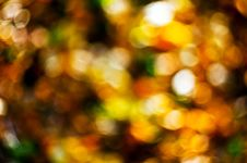 Free Autumn Abstract Background Royalty Free Stock Photos - 16405618