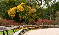 Free Benches In The Park Royalty Free Stock Photos - 16405928