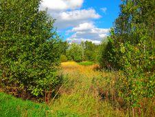 Free Autumn Stock Images - 16407944