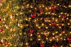 Free Christmas Tree Details Stock Image - 16408461