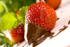 Strawberry In Chocolate Royalty Free Stock Image
