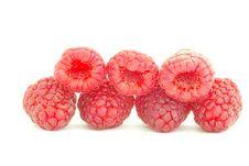 Free Raspberry Royalty Free Stock Photo - 16409565