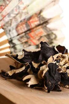 Free Black Fungus Royalty Free Stock Images - 16410269