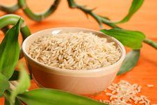 Free Rice Stock Photos - 16410543