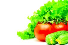Group Of Tomatoes, Cucumbers And Salad Isolated Royalty Free Stock Images