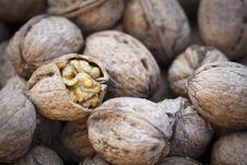 Free Close Up Walnuts Stock Photos - 16411553