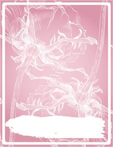 Pink Frame With Rose Stock Images