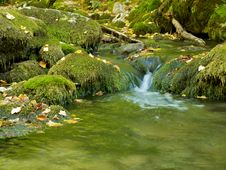 Free Mountain Stream Royalty Free Stock Photography - 16413657