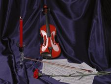 Free Viola Royalty Free Stock Photography - 16414987
