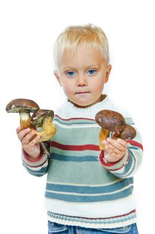 Free Boy With A Basket Of Mushrooms Royalty Free Stock Image - 16418936