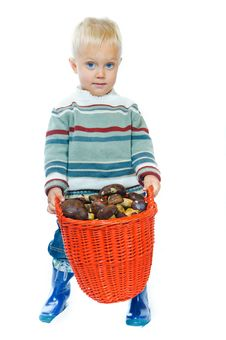 Free Boy With A Basket Of Mushrooms Stock Photos - 16418943