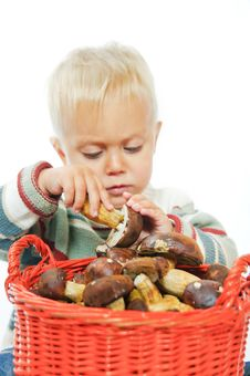 Free Boy With A Basket Of Mushrooms Royalty Free Stock Photo - 16418945