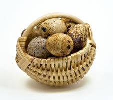 Free Quail Eggs In The Basket Royalty Free Stock Photo - 16418965