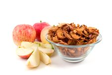 Free Fresh And Dried Apples Royalty Free Stock Photography - 16419087