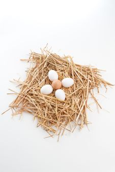 Free Nest Of Brown And White Eggs Stock Photography - 16419672