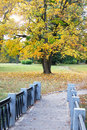 Free Autumnal View Royalty Free Stock Photos - 16427038