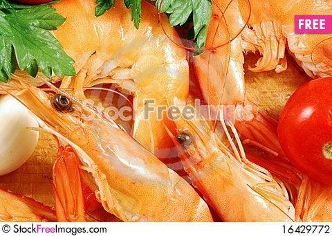 Shrimp 004 bis Stock Photo
