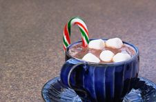 Free Hot Chocolate Stock Image - 16423961