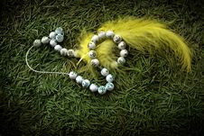 Free Beads And Yellow Feather Royalty Free Stock Photo - 16425635
