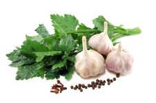 Free Garlic With Leaves Of A Celery And Spices Royalty Free Stock Photography - 16426657