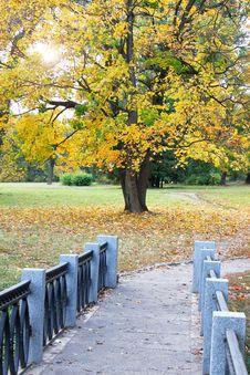 Autumnal View Royalty Free Stock Photos