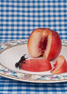 Free Insect Eating A Peach Stock Photos - 16427643