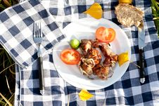 Free Grilled Meat Pieces With Vegetables Royalty Free Stock Image - 16428826