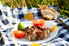 Free Grilled Meat Pieces With Vegetables Stock Images - 16428864