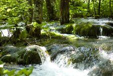 Free Plitvicer Water Course Stock Photos - 16428943