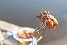 Free Close Up Of Grilled Meat Piece Stock Image - 16429071