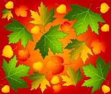 Free Autumnal Seamless Background With Leaves. Royalty Free Stock Images - 16429079