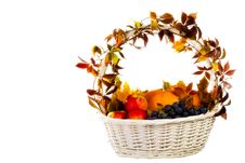 Free Autumn S Basket Stock Photos - 16429783