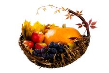 Free Autumn S Basket Stock Images - 16429804